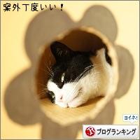 dai20161004_banner.jpg