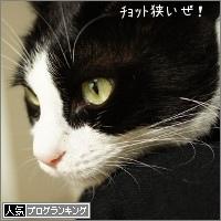 dai20161005_banner.jpg