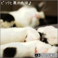 dai20161007_banner.jpg
