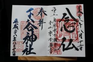 IMG_0003 (2)