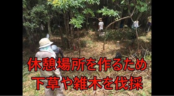 自然を守れと言いながら、自分達の活動の為なら、山を切り開いています。 物凄く集まっている人のトイレは?