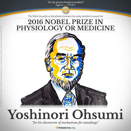 Nobel 2016 en Medicina para Yoshinori Ohsumi
