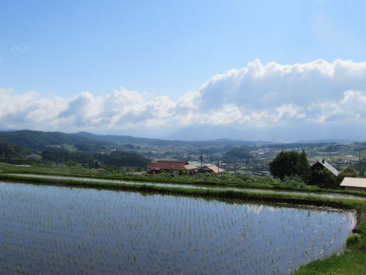 飯綱町の田んぼ