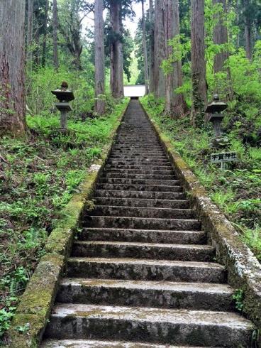 松峰神社階段下より