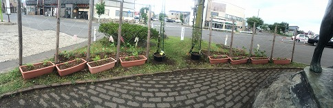 花壇パノラマ