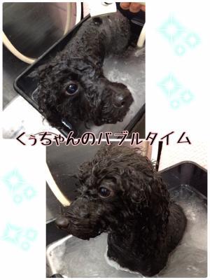 く_convert_20160731214710