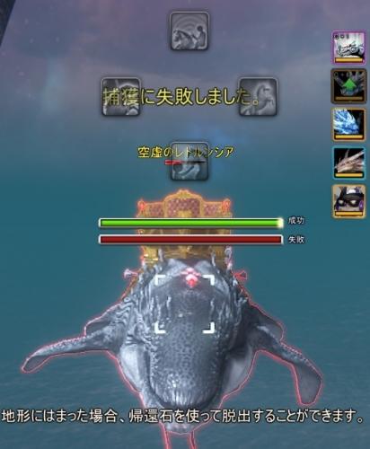 クジラ1回目