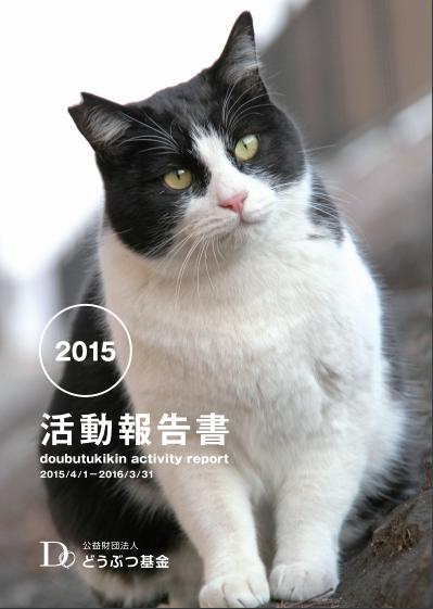 活動報告書2015