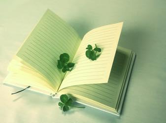 新しいこと日記