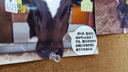 20160904_104031.jpg