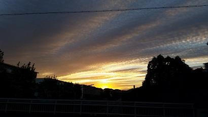 20161010_060911.jpg
