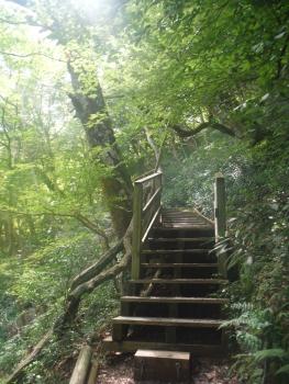 5川には階段も