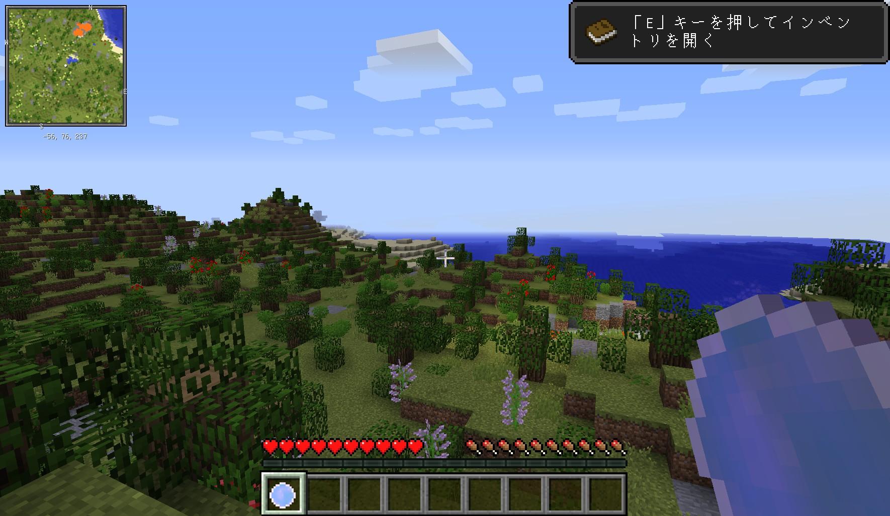 minecraft_048.jpg