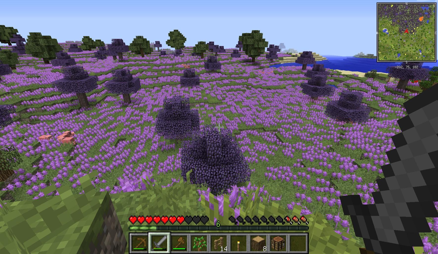 minecraft_050.jpg