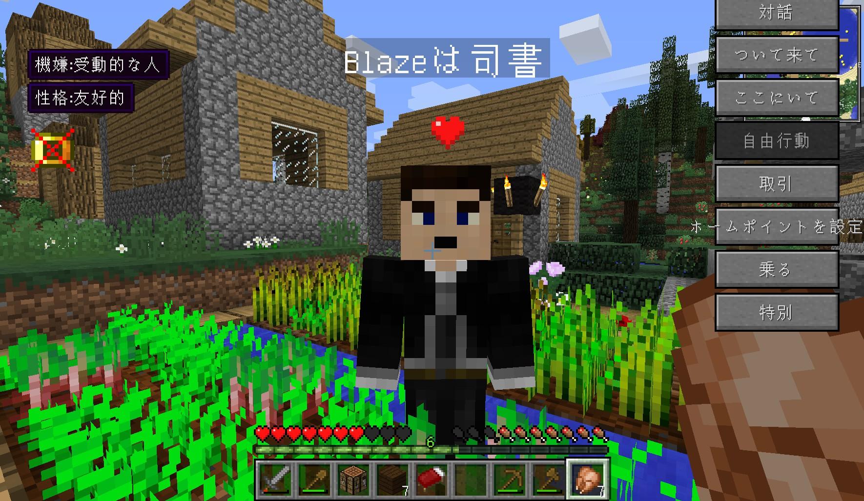 minecraft_052.jpg