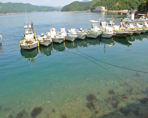 蒋渕ブルーと漁船