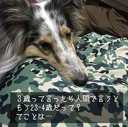 IMG_6872.jpg