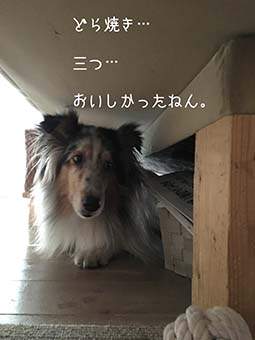 IMG_7787.jpg