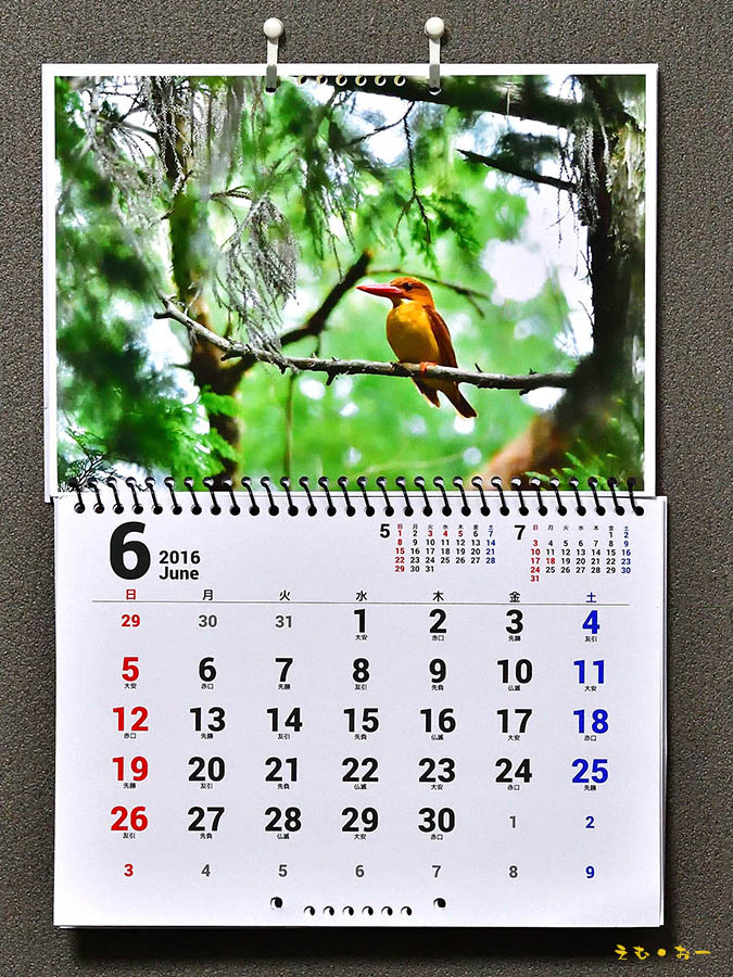 calendar-2b_201607142023357ca.jpg