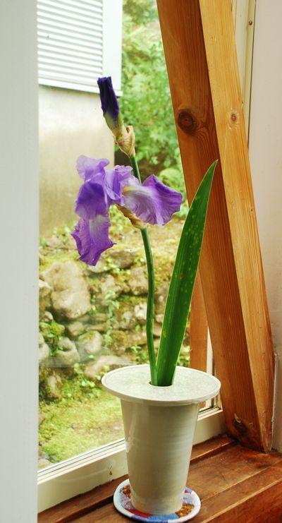 ジャーマンアイリスと花瓶19