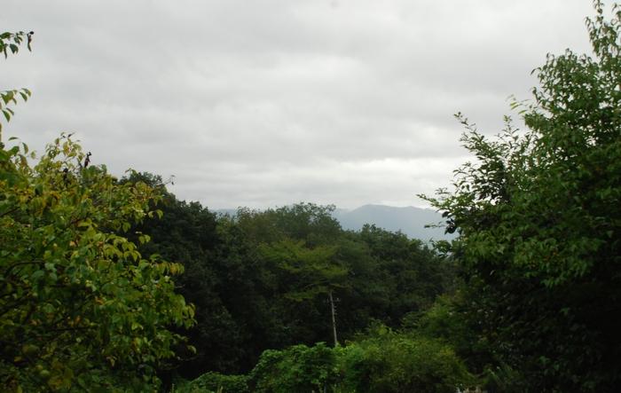 雨の日曜日3