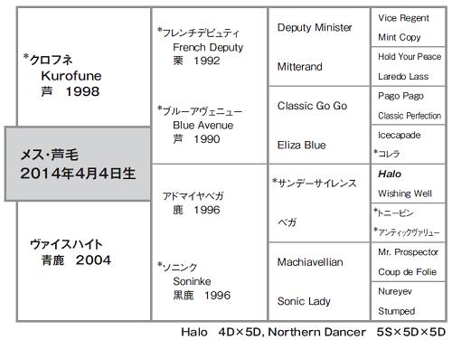 クルークハイト血統図
