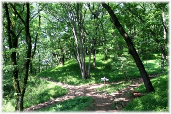 160522E 002緑の十字路@桜ケ丘公園32