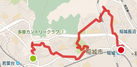 MMH160703稲中城山-NH21