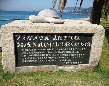戸形小学校浜 (2)