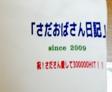 DSC_4831 - コピー