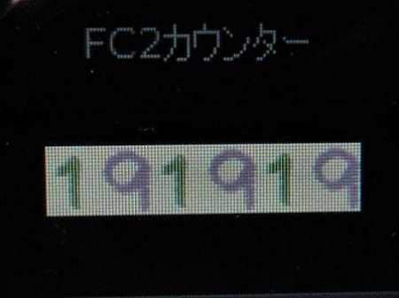 花ミズキ 002