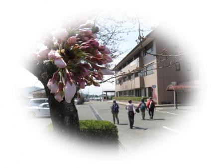 平家祭り 184