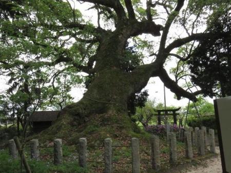 仁比山神社 011