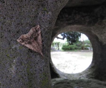 仁比山神社 015