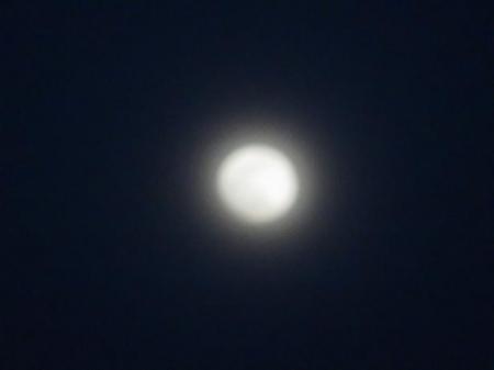 おぼろ月夜 013