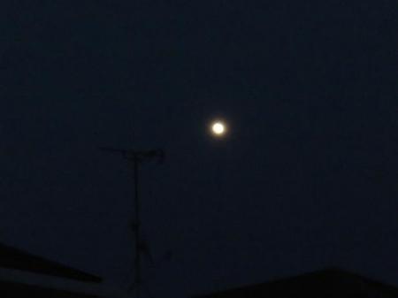 おぼろ月夜 015
