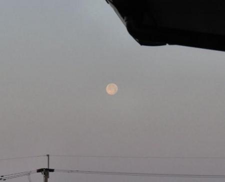 月ツバメ 007