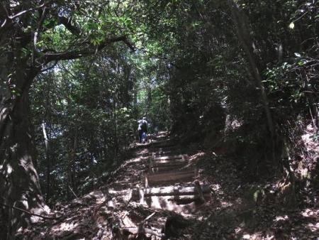 コシハキ・小岱山 097