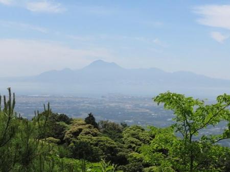 コシハキ・小岱山 144