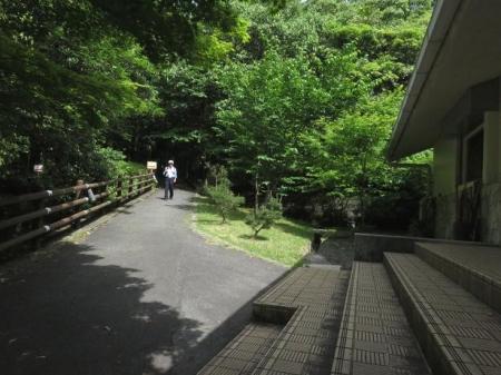 コシハキ・小岱山 197