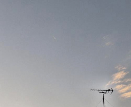 月と鳥 001
