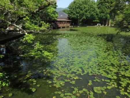 高良山・清水山 199