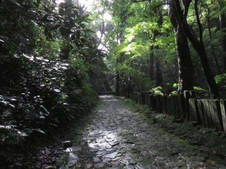 大川公園 003