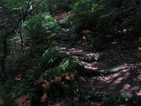 キツネ八幡岳 126