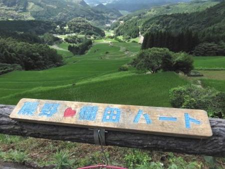 八幡岳 090