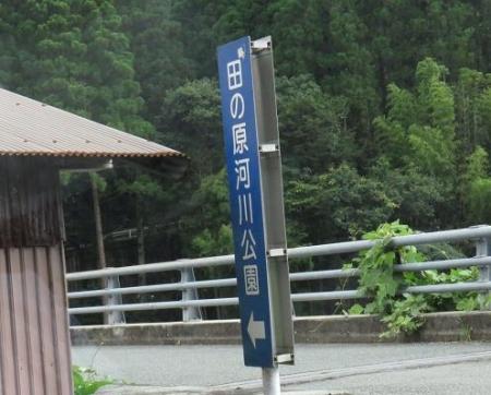 星野村ヤブラン 057