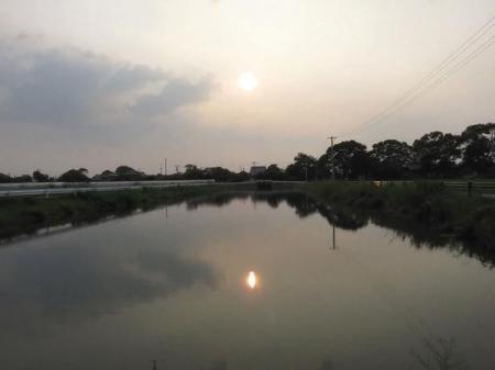 夕陽 029