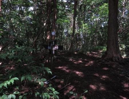 カラ迫岳 047