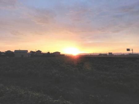 朝の虹 031