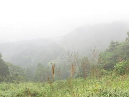 霧の天山 089